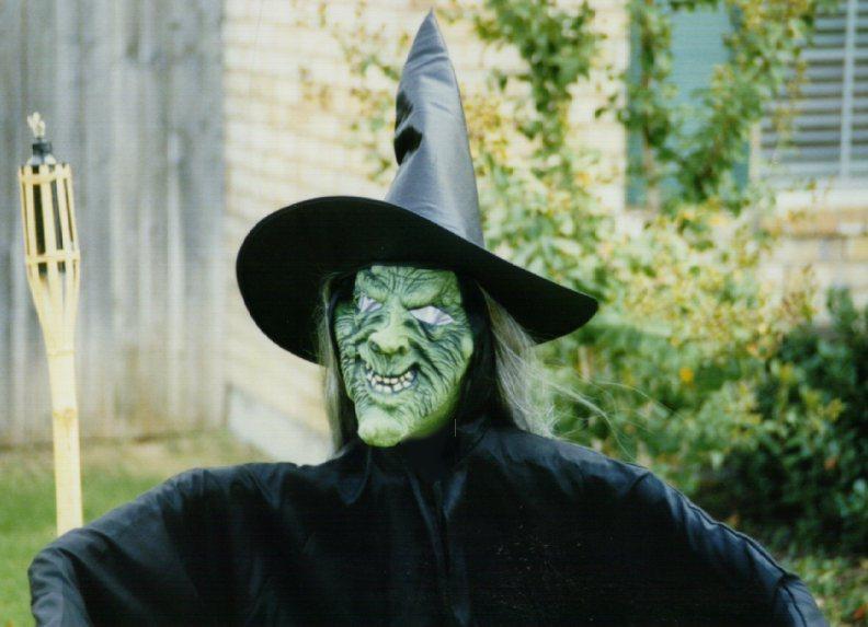 witch2.jpg - 68020 Bytes