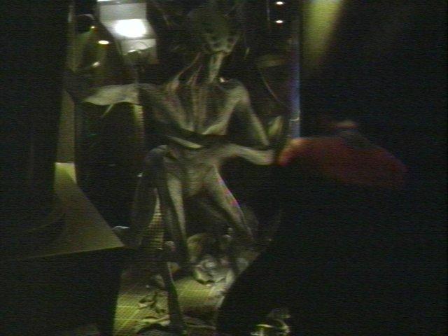 Voyager+species+8472